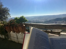 Reads with a view.
