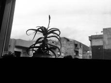 Gloomy days.